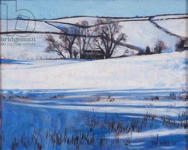 Snow Shadows, 2010 (oil on canvas)