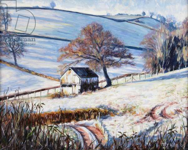 Winter Frost, 2009 (oil on canvas)