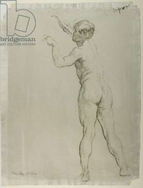 Male Nude Standing (chalk on paper)