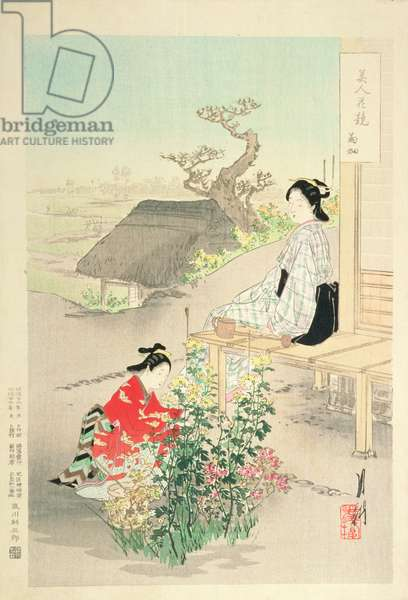 'Chrysanthemum Garden', from the series 'Beauties competing with Flowers', 1893 (colour woodblock print)