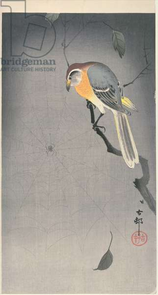 Bird on a branch watching a spider, c. early 1900 (colour woodblock print)