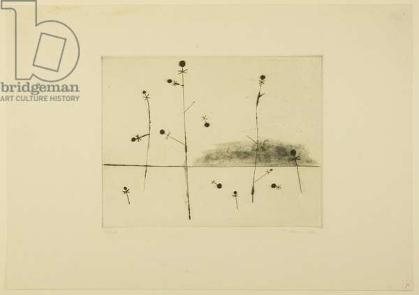 Microcosmos (Plant Cycle) 1950 (etching, drypoint, aquatint, engraving & punches)