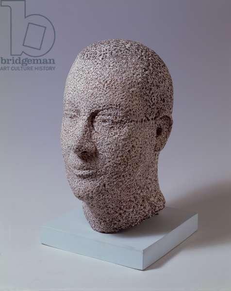 Head of David, 2002 (epoxy resin)
