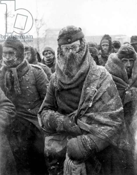 German Prisoners of War at Stalingrad.