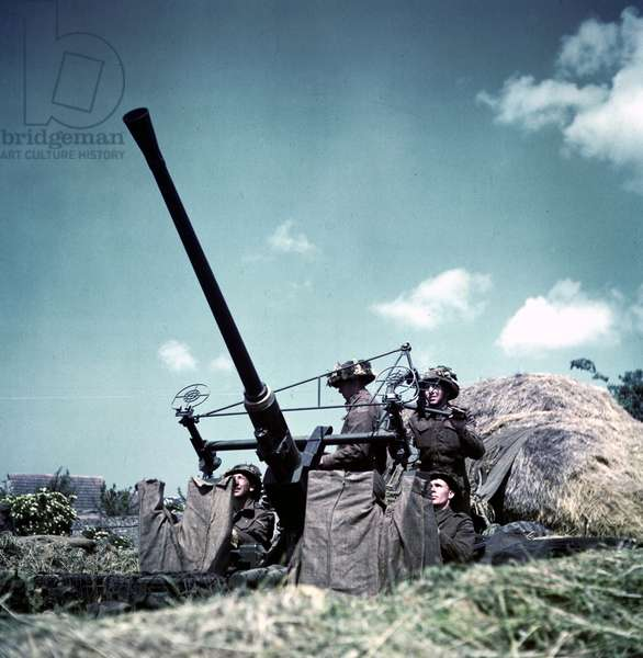 World War Two: Canadian soldiers manning a 40-mm Bofors anti-aircraft gun
