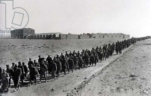 WWII-1940 1941-Italian Invasion of Egypt -Column of Italian prisoners on the march from Sidi Barrani December 16, 1940