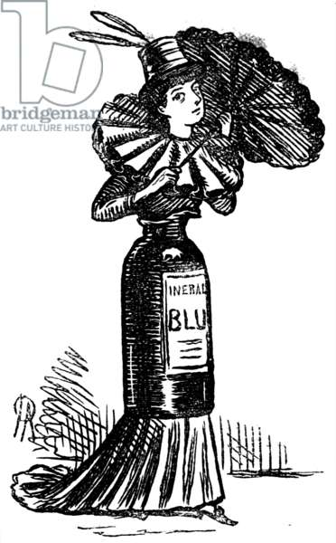 Women's Suffrage, Female political emancipation, 1880