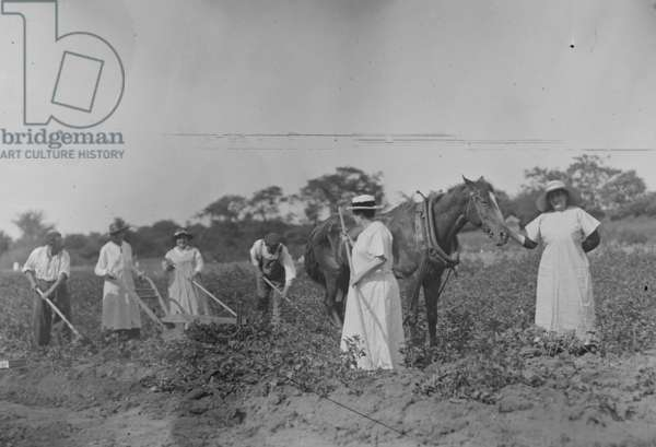 Suffrage farmers (photo)