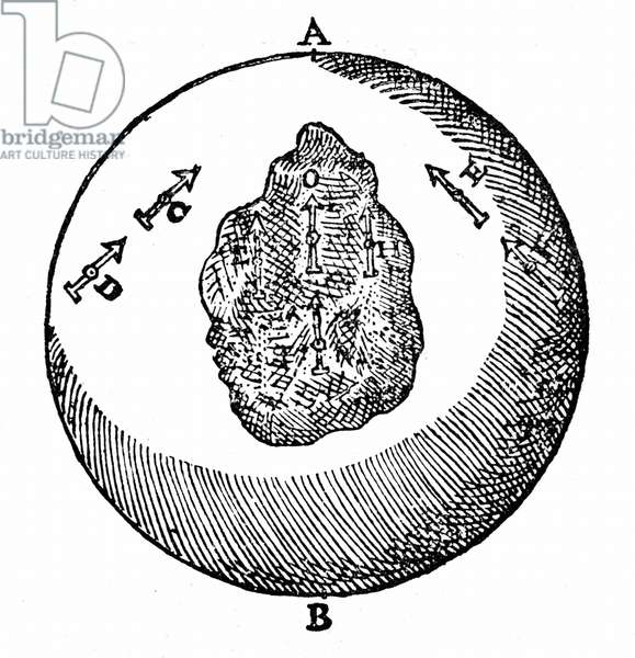 Magnetic needles on a terrella will point towards the north pole, A. other needles will do likewise, even though the surface of the terrella is uneven, as at O. From William Gilbert De Magnete, London, 1600