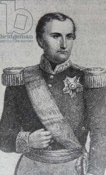 Portrait of Joseph-Napoléon Bonaparte