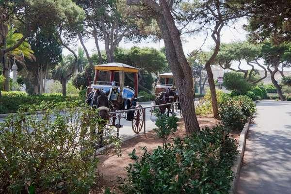 Carrozins (Horse Carriages), Mdina, Malta (photo)