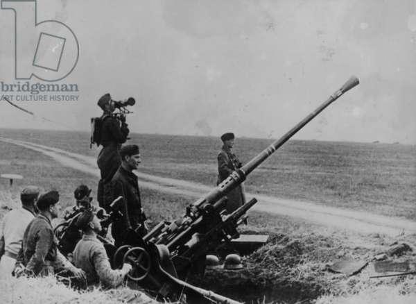 A Gun Crew With Their Artilley Piece, 1942 (b/w photo)