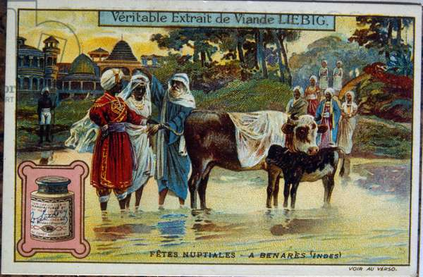 Liebig card showing Indian wedding festival in the holy waters of Benares, India