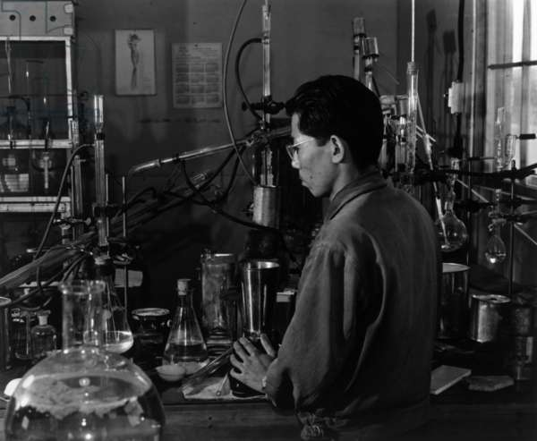 Frank Hirosama (Hirosawa) in laboratory, Manzanar Relocation Center, California, 1943 (photo)