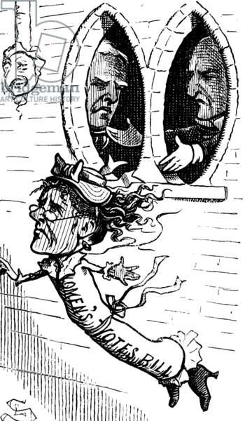 The fate of the women's suffrage bill, 1880
