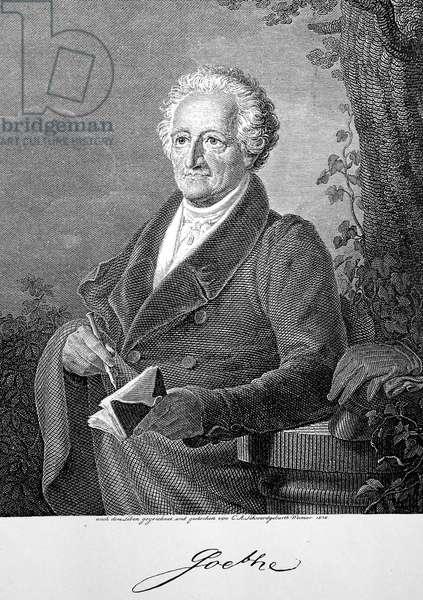 Johann Wolfgang von Goethe 83 years old