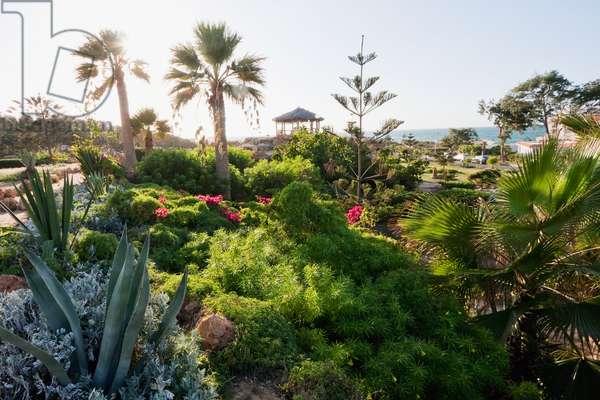 Gardens of Al Montazah Palace by the Mediterranean Sea, Alexandria, Al Iskandar (photo)