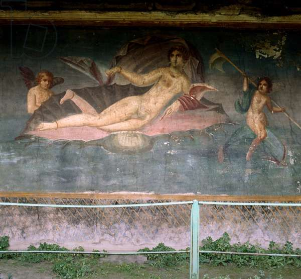 Venus resting in the shell. House of Venus, Pompei, Italy. Fresco.