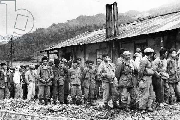 Korean War. Members of Syngman Rhee's American-equipped troops captured by Chinese Peoples Volunteers in Northwest Korea. January 1951.