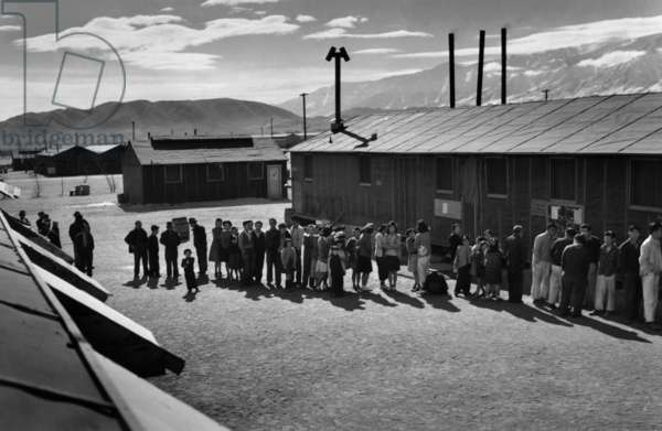 Mess line, noon, Manzanar Relocation Center, California, 1943 (photo)