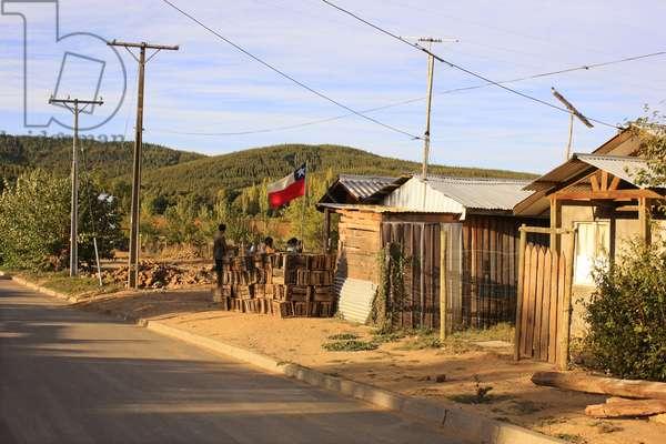 Ninhue Homes (photo)