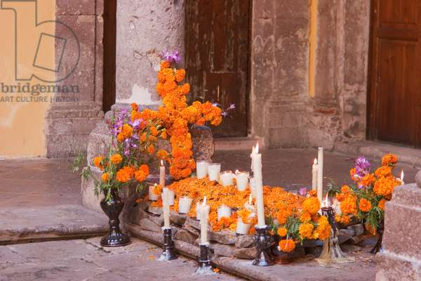 Day Of The Dead (photo)