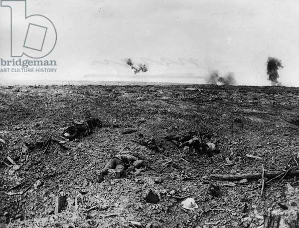 View of the Battlefield, 1916 (b/w photo)
