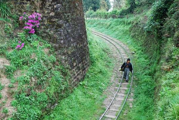 A farmer crossing the railway track in Darjeeling, India. April 18, 2007.  (photo)