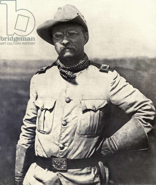 Col, Theodore Roosevelt (b/w photo)