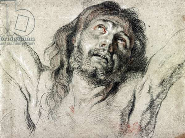Head of Christ on the cross by Peter Paul Rubens (drawing)