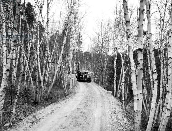 Road To Mount Rushmore, Keystone, South Dakota, c.1925 (b/w photo)