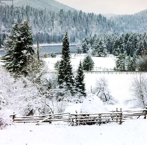 A Winter Scene in the Altai Region of Russia.