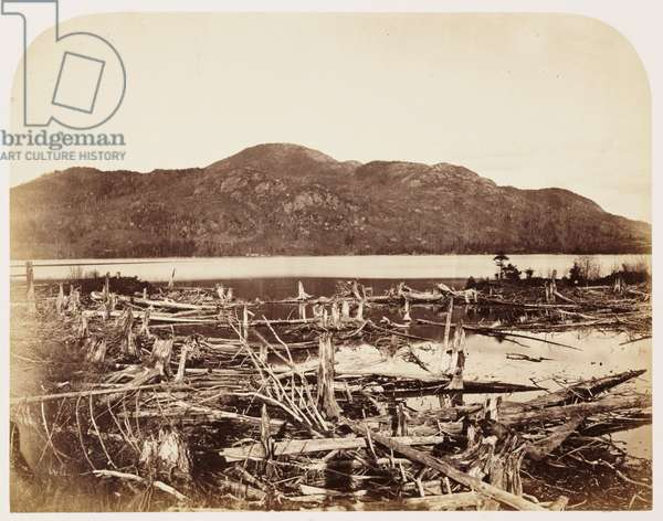 Mount Orford', 1860