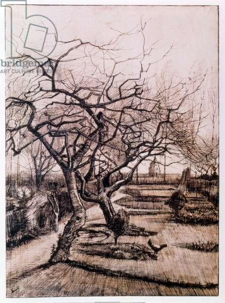 The Parsonage Garden at Nuenen in Winter (1884)