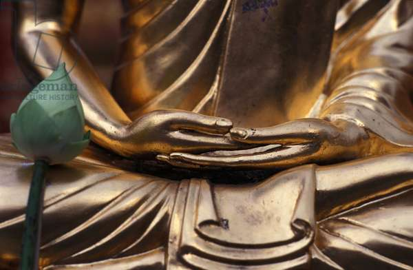 Lotus flower and Buddha's hands (photo)