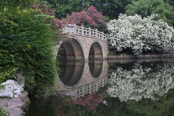 China, Shanghai, Lu Xun Park, bridge with trees reflected in water