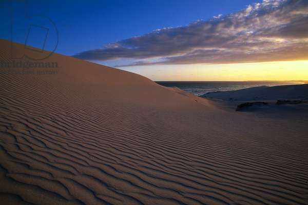 South Africa, wind-blown sand dunes at De Hoop Nature Reserve.