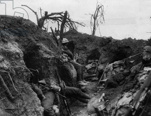 Men of the Border Regiment, 1916 (b/w photo)