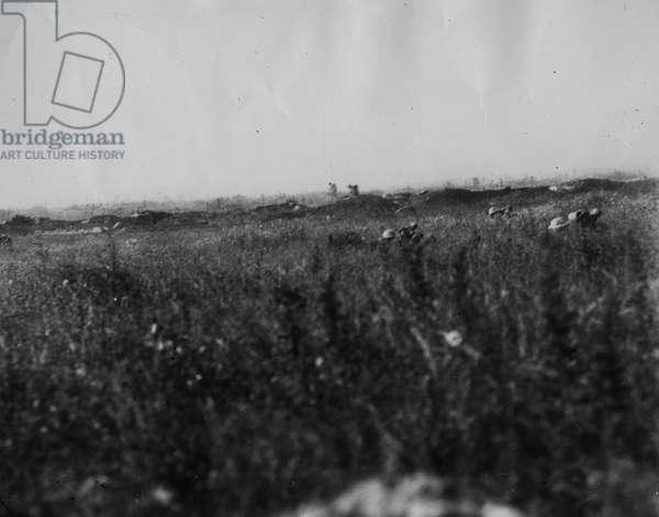Troops take cover, 1916 (b/w photo)