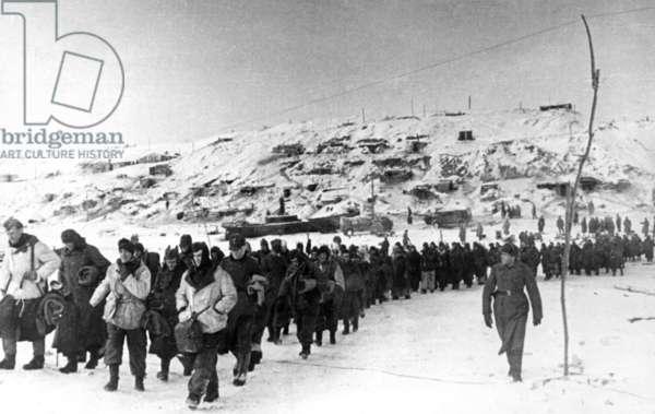 Marching German Prisoners of War Towards the Volga, January 1943, Stalingrad.