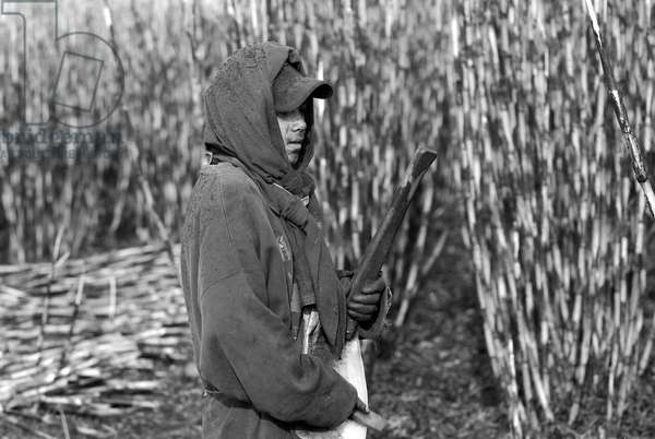 A Mexican boy who works at the sugarcane plots, in Ahualulco, Jalisco, Mexico. March 31, 2007.  (photo)