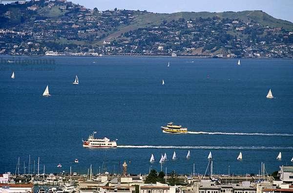 Bay in Summer, San Francisco (photo)