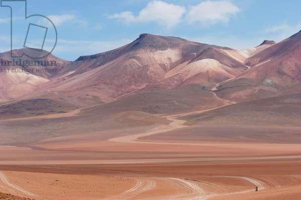 Multi-Coloured Volcanic Landscape Of The Andes Cordillera (photo)