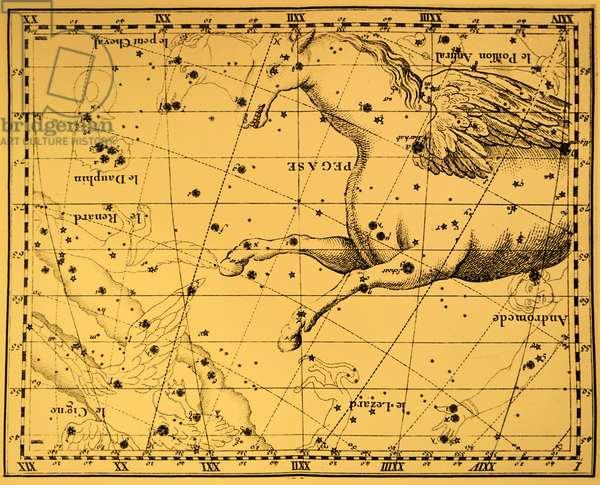 The constellation of Pegasus.