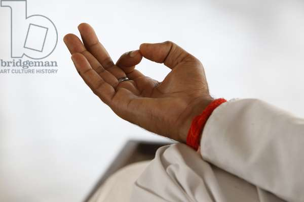 Yoga class at Patanjali Yog Vidyapith (photo)