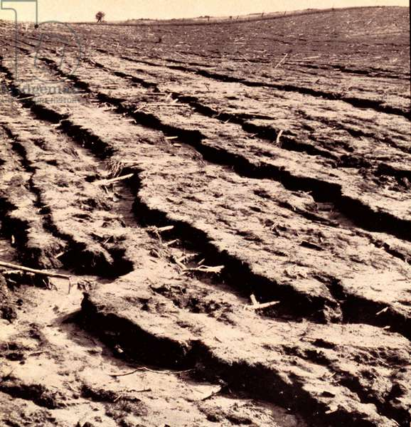 Photograph showing dust covering a farm land in the American Midwest during the Dust Bowl years