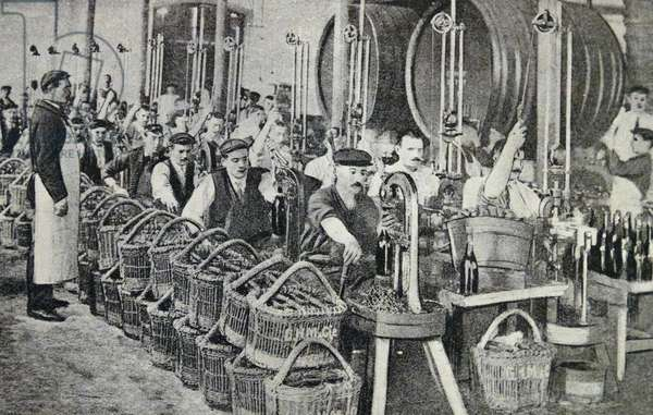 Print depicting the bottling of wine in Champagne