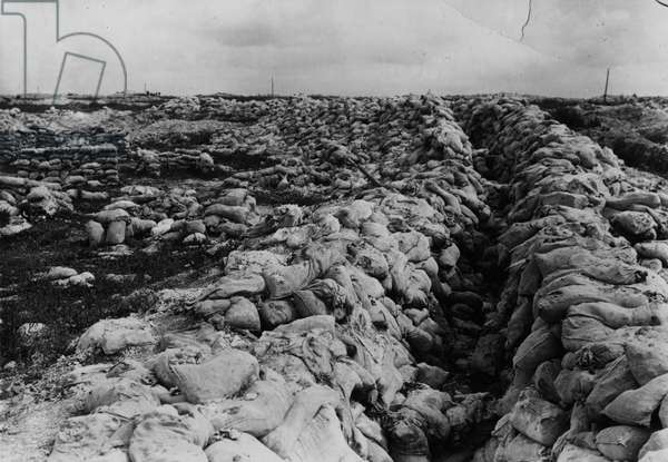 Battles of the Somme, 1916 (b/w photo)