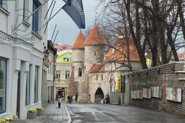 People in Front of the Viru Gate at Tallinn, Estonia (photo)