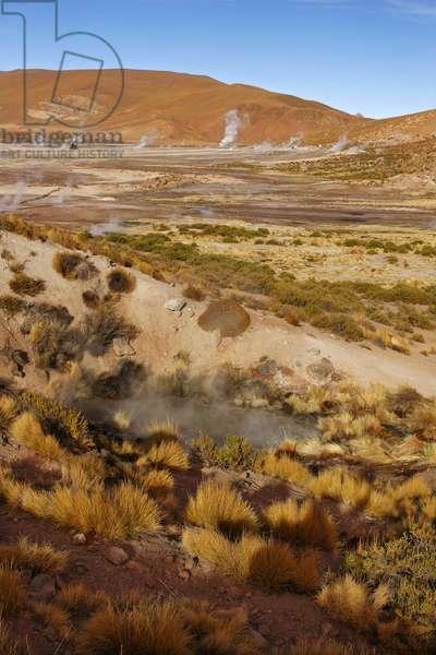 El Tatio Geysers, Chile (photo)
